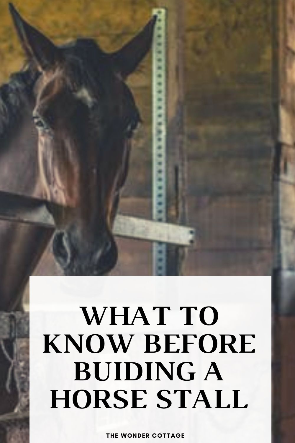 what to know before building a horse stable