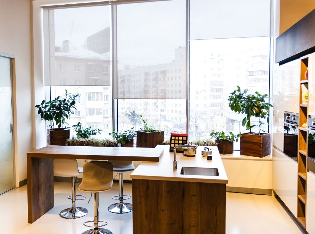 Office decor with potted plants