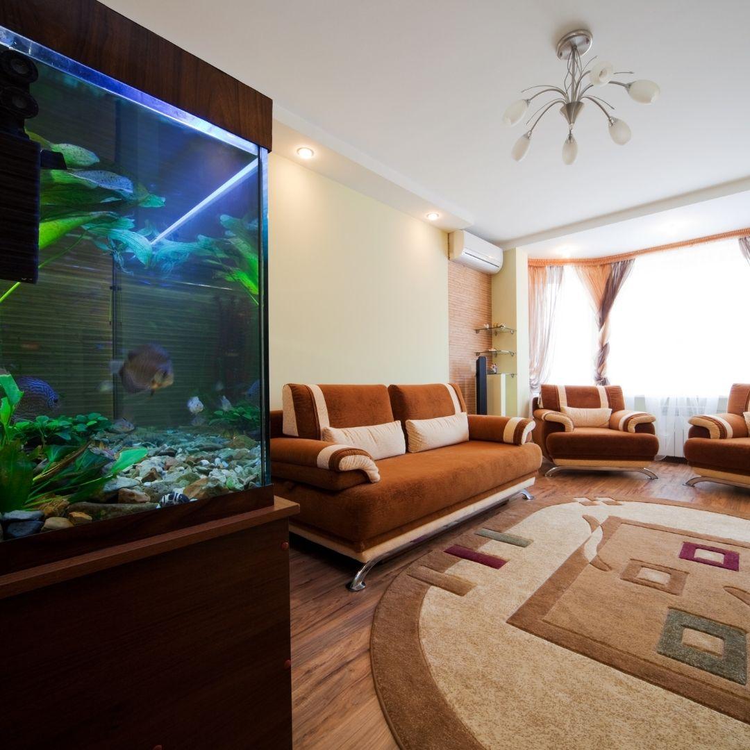 aquarium in a living room
