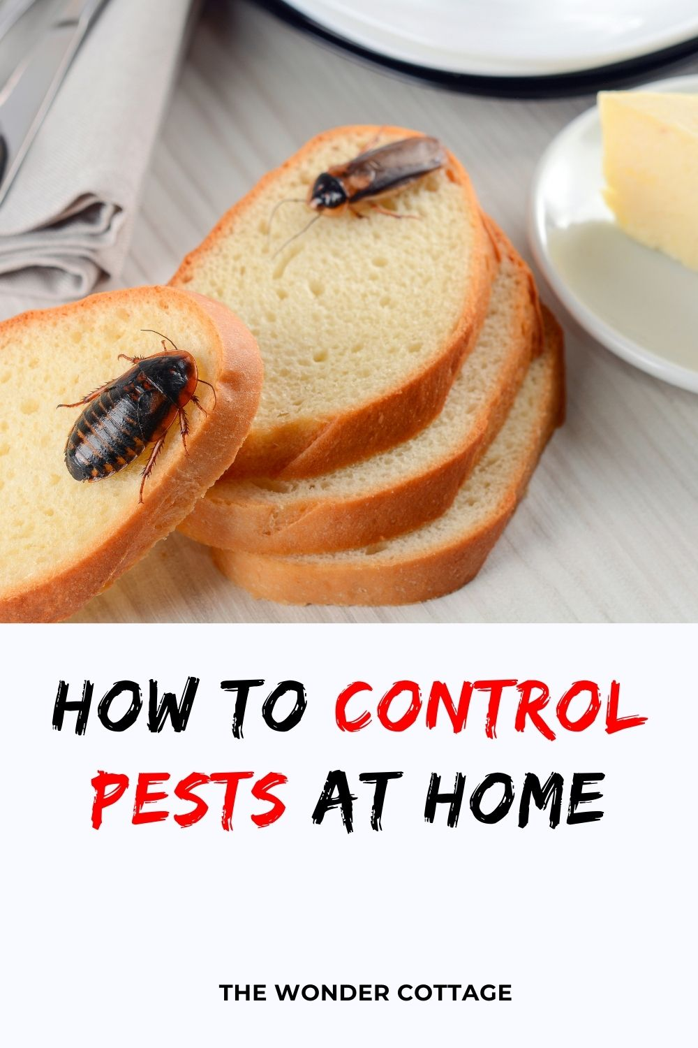 how to control pests at home
