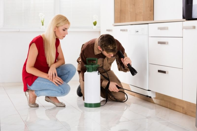 woman looking at exterminator spraying insecticide for pest control