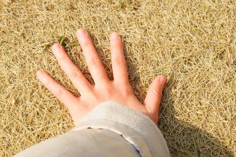 touching the ground
