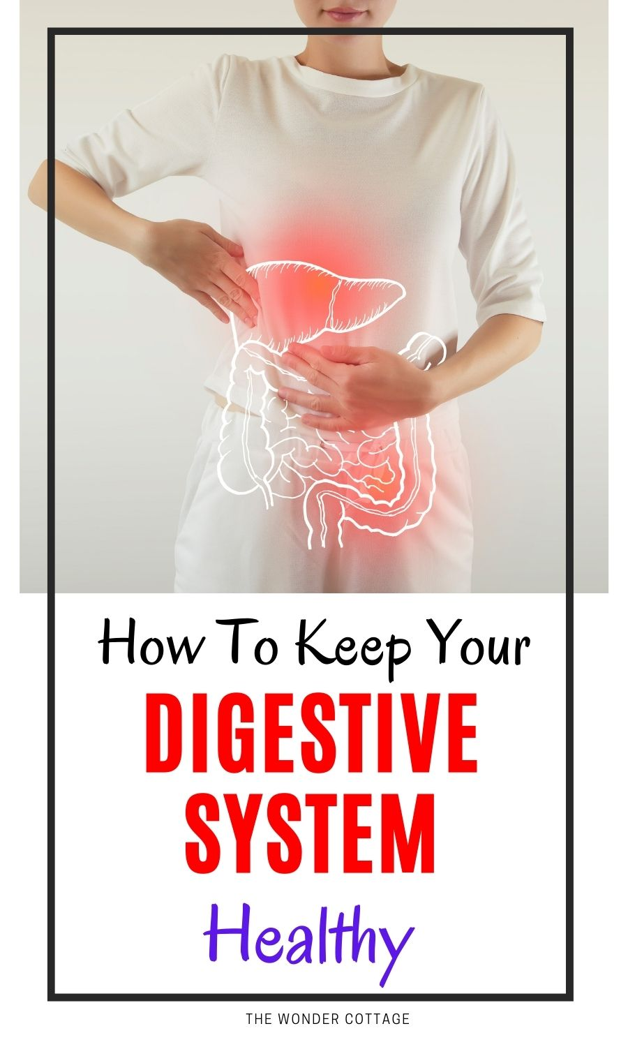 How To Keep Your Digestive System Healthy